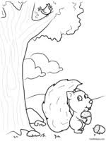 squirrels theme unit printables and worksheets