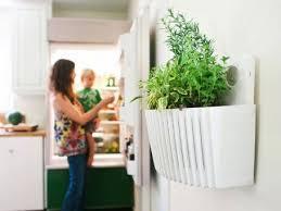 29 best indoor gardening gadgets images on pinterest indoor