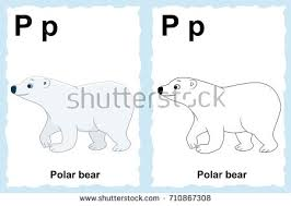 coloring book preschool children colorful stock vector