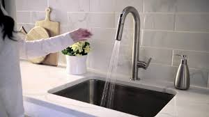 fresh pull down kitchen faucets image best kitchen gallery image