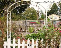 extending my harvest by planting a fall vegetable garden a