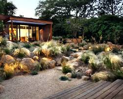 hardy grasses for the garden decorative grass calgary ornamental
