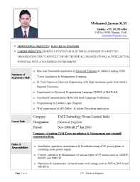 Resume Types Examples by Examples Of Resumes Job Resume Sample Format For Paramedical