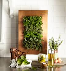 a copper modern contemporary herb garden for the kitchen
