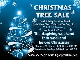 christmas tree sale white plains family friendly hudson valley