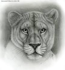 lioness animal symbolism by art of sekhmet on deviantart
