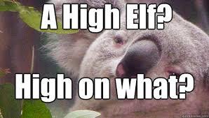 High Koala Meme - a high elf high on what stoner koala quickmeme