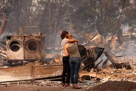 Wildfire Cartoon Dvd by At Least 10 Dead As Fires Rage In California Wine Country San