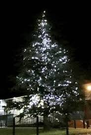 Commercial Christmas Decorations Belfast by 90 Days Before Christmas And First Tree Lights Up By Accident In