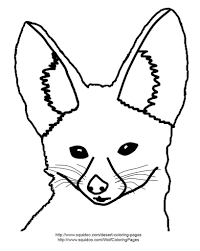 fennec fox coloring page fennec fox coloring page adapted u2026 flickr