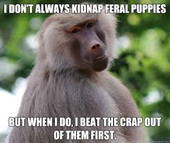 Baboon Meme - i don t always kidnap feral puppies but when i do i beat the crap