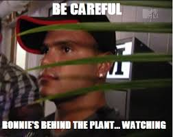 Jersey Shore Meme - pay attention to be careful ronnie s behind the plant watching