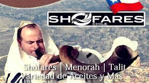 shofares de israel shofares chile shofar kudu 26 28 pulgadas
