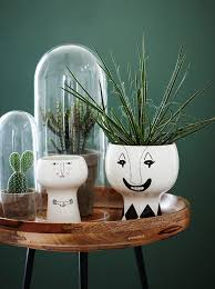 plante verte dans une chambre du vert dans la chambre cocon de décoration le