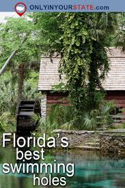 Three Sisters Springs Map 25 Best Florida Springs Map Ideas On Pinterest Natural Springs