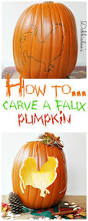 cute owl pumpkin carving pattern best 25 cat pumpkin carving ideas on pinterest cat pumpkin
