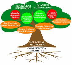 molecular magnetism web