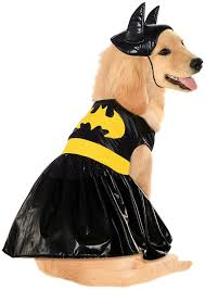 dog clothes for halloween amazon com dc comics pet costume small batgirl batgirl dog