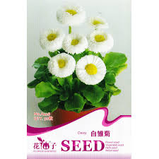 cheap seed packets online get cheap seed packets aliexpress alibaba