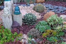 succulent rock garden pictures best idea garden