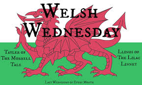 Why Does The Welsh Flag Have A Dragon Welsh Wednesday Button Jpg