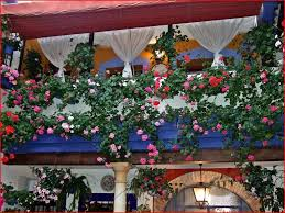 Beautiful Balcony Balcony Tag Wallpapers Balcony Blooming Flowers Pink Hanging