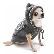 chihuahua sweaters top 35 winter clothes for dogs top jewelry brands designs