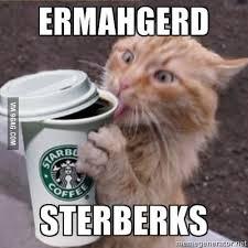 Ermahgerd Animal Memes - ermahgerd sterberks 9gag