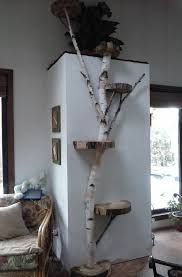 Cat Trees For Big Cats White Birch Wall Cat Tree White Birch Designs Pinterest Cat