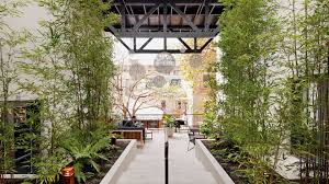 sydney the hills treetops sydney harbour rocks hotel sydney facilities information about the