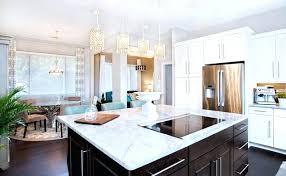Modern Kitchen With White Appliances Espresso And White Kitchen Cabinets Espresso And White Kitchen