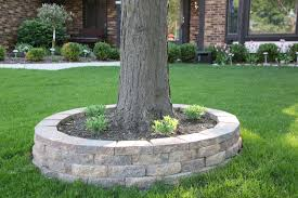 retaining wall around tree diy stone to go around your tree you
