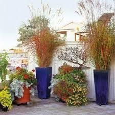 flower pots foter