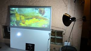 best backyard projector screen with amazing gain youtube
