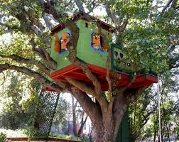 three house magic tree house in the middle of a fir forest and few ideas for