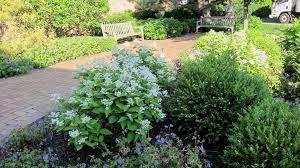 5 simple and elegant garden design concepts sproutabl