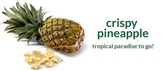freeze dried pineapples u2013 100 fruit buy online u2013 crispy green