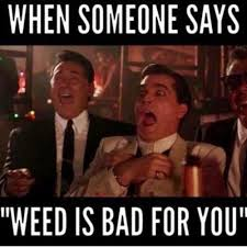 Stoner Meme - funny happy weed meme 420 stoner hemp blaze it stoner blog weed
