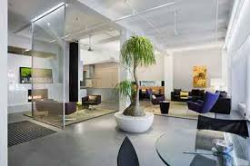 modern indoor trees http lomets