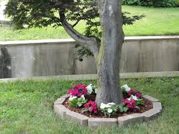 15 eye catching flower beds around trees you need to see