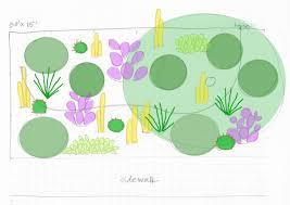 Suburban Backyard Landscaping Ideas by Design Ideas U2013 Arizona Desert Xeriscape