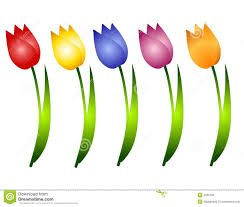 Images Of Tulip Flowers - assorted spring tulips flowers clip art stock photo image 4026180