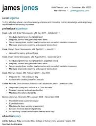 It Professional Resume Samples Free Download by It Professional Resume Haadyaooverbayresort Com