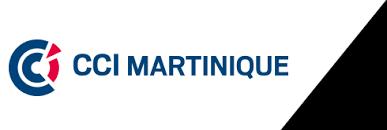 Cci Martinique Ccim Fiches Pratiques Pour Vos Formalités Cci Martinique Ccim Fiches Pratiques Pour Vos Formalités Cfe