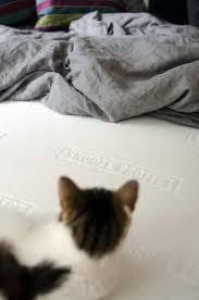 Schlafzimmer Komplett Zu Verschenken In Berlin Die Besten 25 Matratzen Berlin Ideen Auf Pinterest Bett Mit