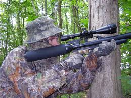 tree squirrel part ii afield on airguns