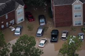 lexus of marin careers storm flooding destroyed hundreds of thousands of cars in a city
