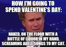 Valentines Day Funny Meme - valentine s day memes for those that forgot to get a