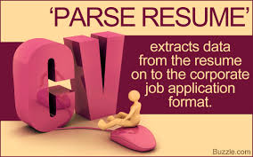 Best Resume Parser by What Does Parse Resume Mean