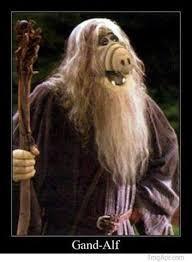 Alf Meme - gand alf meme by georg memedroid